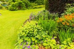 Schöner Garten, der im Sommer landschaftlich gestaltet stockbilder