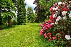Schöner Garten im Frühjahr Stockfotografie