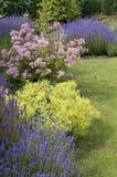 Schöner Garten im Frühjahr. Stockbild
