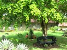 Schöner Garten mit Bank stockfotografie