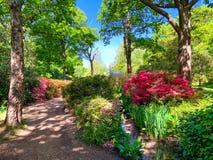 Schöner Garten von Richmond-Park, Isabella-Plantage in London lizenzfreies stockfoto