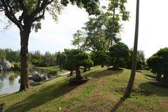 Schöner Gartenpark mit dem Teich über blauem Himmel stockbild