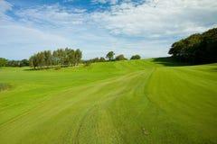 Schöner Golfrasen Stockfotos