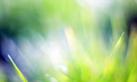 Schöner grüner bokeh Hintergrund Lizenzfreies Stockbild