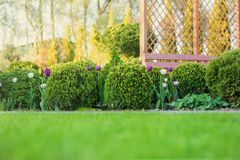 Schöner grüner Garten mit Büsche, Blumen und hölzernem frsesh Buchsbaumes kratzendem summerhouse Gartenarbeithintergrund des szen Lizenzfreies Stockfoto