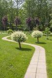 Schöner grüner Garten mit einem Weg, der zwischen zwei japanische Weidenbäume geht Stockfotografie