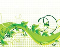 Schöner grüner Hintergrund Lizenzfreie Stockfotografie