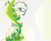 Schöner grüner Hintergrund Stockfoto
