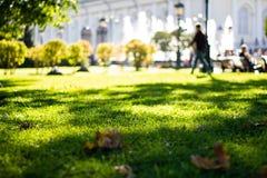 Schöner grüner Rasen und Bäume im Park auf dem Hintergrund von Brunnen an einem sonnigen Tag Die Zahl eines Mannes, der in den Pa stockfotografie