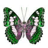 Schöner grüner Schmetterling, gemeiner Kommandant (moduza procris) unter den Flügeln im fancyl Farbprofil lokalisiert auf weißem  lizenzfreies stockfoto