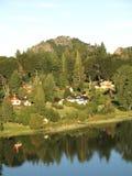 Schöner grüner Wald mit kleinen Häusern neben L Stockbild