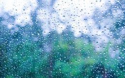 Schöner greentree Hintergrund im Regen Lizenzfreie Stockfotografie