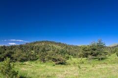 Schöner Hügel lizenzfreie stockbilder