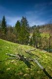 Schöner Hügel in Polen Lizenzfreies Stockbild