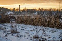 Schöner heller Sonnenaufgang des Morgens und des Winters im Januar Vorort und Feld bedeckten Schnee Lizenzfreie Stockfotografie