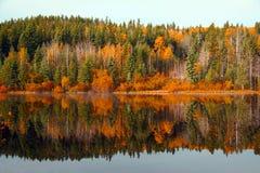Schöner Herbst Lizenzfreie Stockfotografie