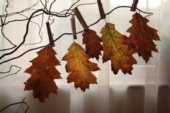 Schöner Herbst Stockbild