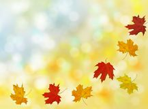 Schöner Herbst mit Fliegenahornblättern mit bokeh lizenzfreie stockbilder