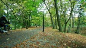 Schöner Herbst in Reitenfahrrad des Parks und der Leute stock video footage