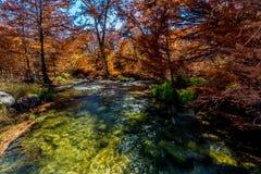 Schöner Herbstlaub auf Guadalupe River, Texas stockbilder