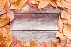 Schöner Herbstlaub auf hölzernem Hintergrund Stockfotos