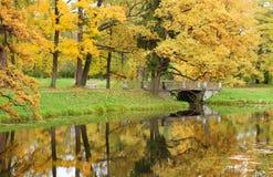 Schöner Herbsttag in Pushkin Stockfotos