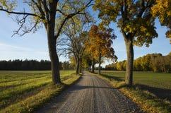 Schöner Herbsttag in Schweden Skandinavien lizenzfreie stockfotografie