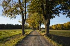 Schöner Herbsttag in Schweden Skandinavien stockbilder