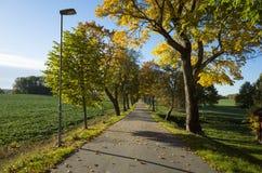 Schöner Herbsttag in Schweden Skandinavien lizenzfreies stockfoto