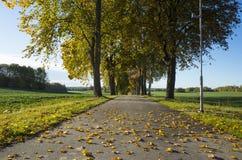 Schöner Herbsttag in Schweden Skandinavien stockfotos