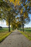 Schöner Herbsttag in Schweden Skandinavien lizenzfreie stockfotos