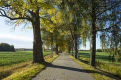Schöner Herbsttag in Schweden Skandinavien stockfoto