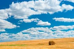Schöner Himmel über Ackerland im Herbst Lizenzfreies Stockbild
