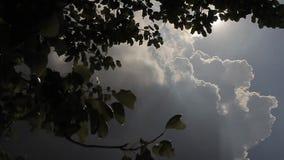 Schöner Himmel nach schlechtem Wetter im leuchtenden Sonnenlicht stock video