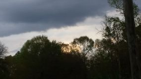 Schöner Himmel u. Bäume Stockfotografie