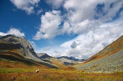Schöner Himmel und Wolken in den mountais lizenzfreie stockbilder