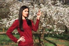 Schöner junger Brunette mit dem langen Haar in einem Park auf einem Frühling mitten in blühenden Bäumen in einem roten Kleid Stockfoto