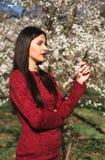 Schöner junger Brunette mit dem langen Haar in einem Park auf einem Frühling mitten in blühenden Bäumen in einem roten Kleid Stockbilder