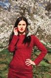 Schöner junger Brunette mit dem langen Haar in einem Park auf einem Frühling mitten in blühenden Bäumen in einem roten Kleid Stockfotografie