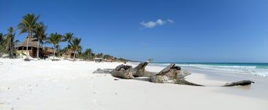 Schöner karibischer Strand Stockfotografie