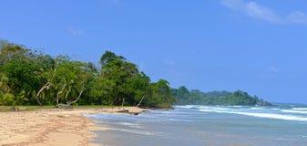 Schöner karibischer Strand Stockbild