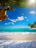 Schöner karibischer tropischer Strand der Kunst See Lizenzfreies Stockfoto