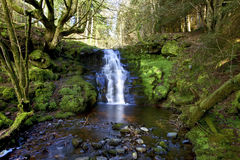 Schöner Kaskadenwasserfall, Nant Bwrefwy, oberes Blaen-y-Glyn stockbilder