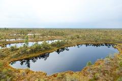 Schöner kleiner See in Nationalpark Kemeri, Lettland, mit einer Himmelreflexion in der Wasseroberfläche Lizenzfreies Stockfoto