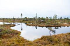 Schöner kleiner See in Nationalpark Kemeri, Lettland, mit einer Himmelreflexion in der Wasseroberfläche Lizenzfreie Stockbilder