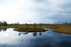 Schöner kleiner See in Nationalpark Kemeri, Lettland, mit einer Himmelreflexion in der Wasseroberfläche Stockfotos