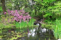 Schöner kleiner Teich Stockbild