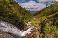 Schöner kleiner Wasserfall in den Bergen, Ukraine lizenzfreie stockbilder