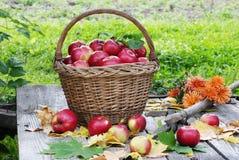 Schöner Korb mit Äpfeln Stockfotos