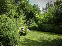 Schöner landschaftlich gestalteter Garten mit Evergreens E lizenzfreie stockbilder